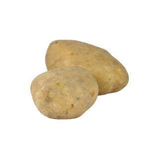 Kartoffeln Jumbo gewaschen