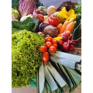 Gemüsekiste ohne Salat