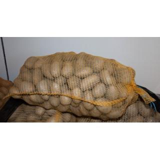 Kartoffeln Erkika 10kg