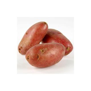 Kartoffeln Laura gewaschen