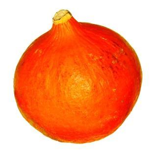 Orange Knirps
